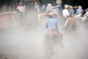 Horse Arena Dust Control Product
